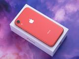 苹果iPhone XR(128GB)整体外观第5张图